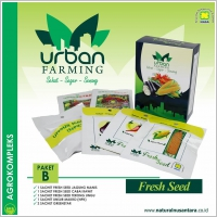 Urban Farming Paket B Nasa